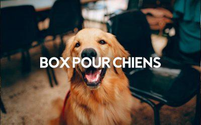 Le Top 10 des Box pour Chiens