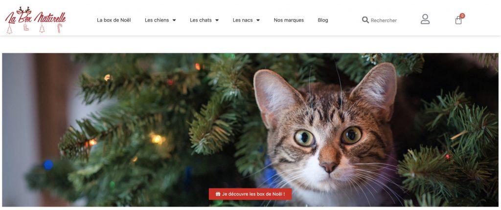La box naturelle box mensuelle chat