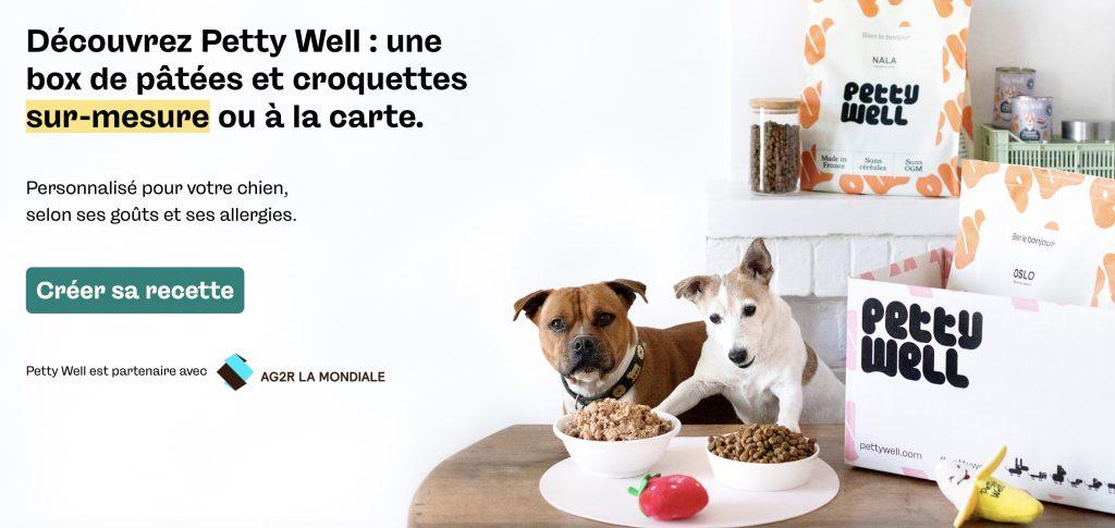 box croquette chien pettywell