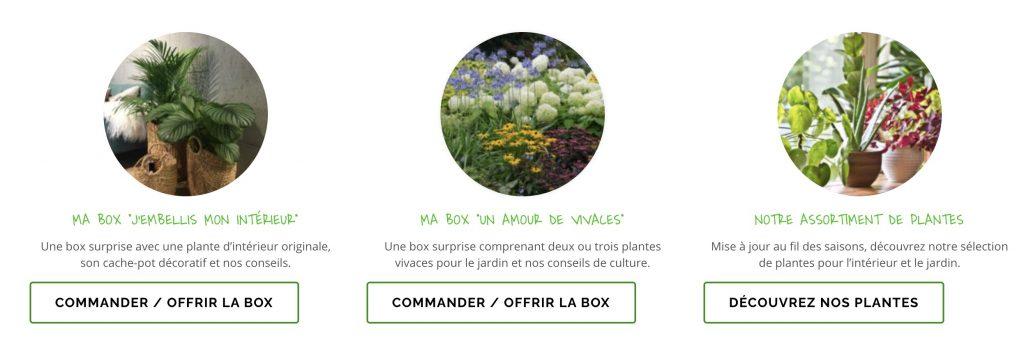 my little green box paysagiste