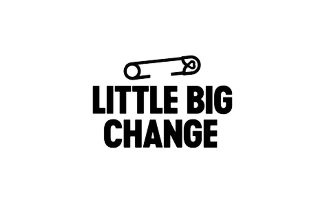 little big change avis